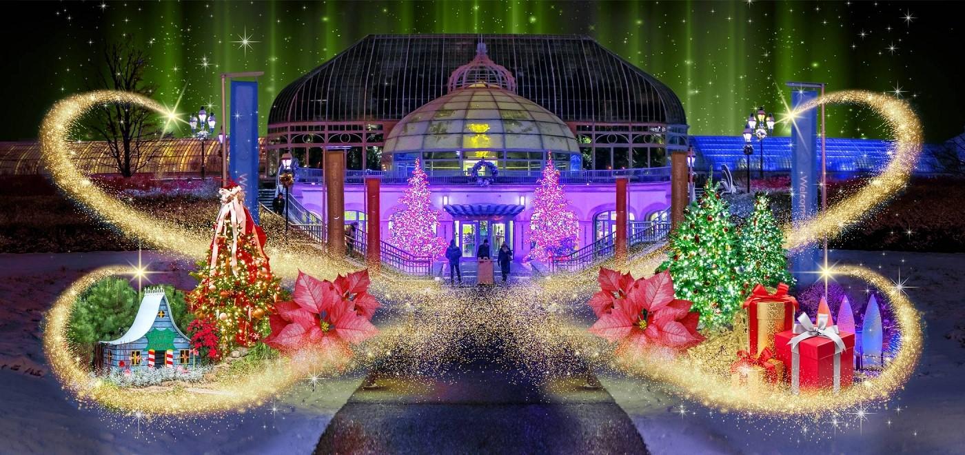 phipps winter flower show and light garden holiday magic